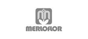 Merloflor