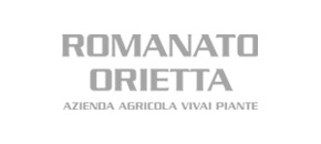 Romanato Orietta
